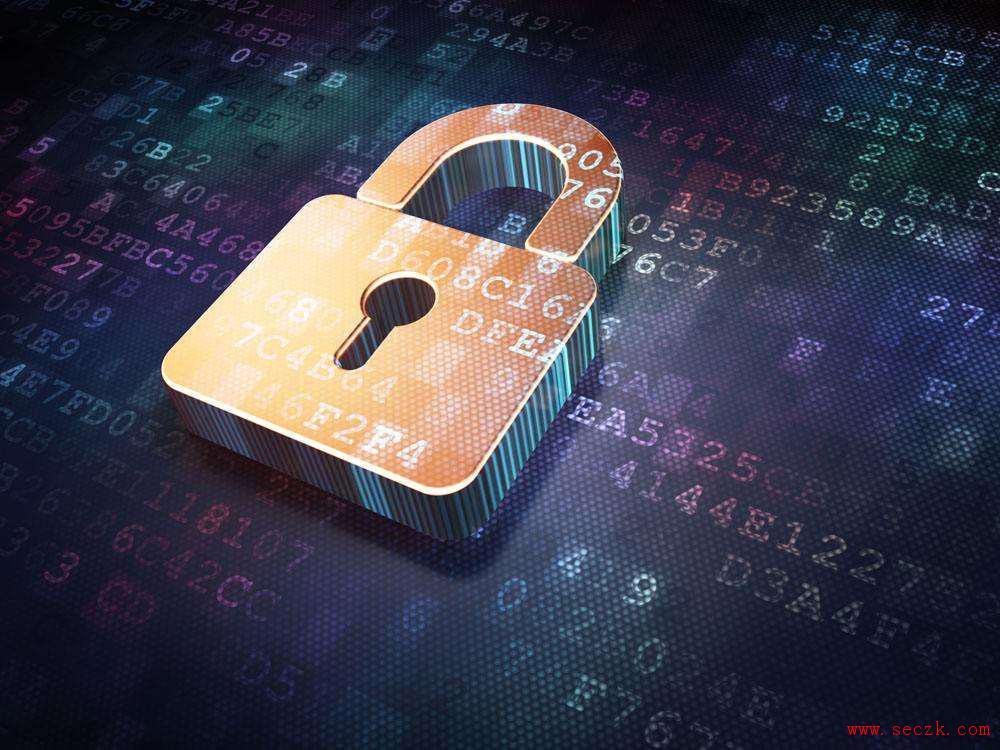 调查:仅不到30%的公司采用加密
